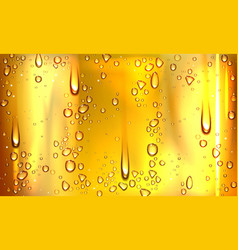 condensation water or beer droplets on glass vector image