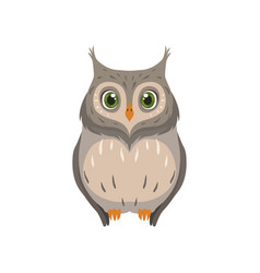 Cute owl lovely bird cartoon character front view vector