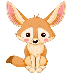 Fox Fennec vector image