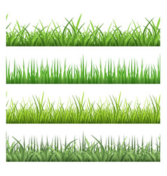 Green field grass horizontal seamless vector