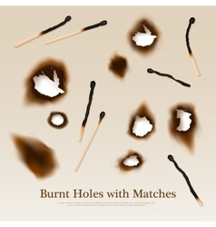 Paper With Burnt Holes And Matches vector image