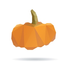 Pumpkin abstract isolated on a white vector image