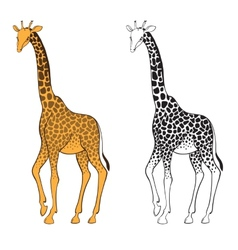 Set of two giraffes Wall stickers vector