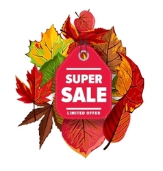 Super sale label Limited offer vector image
