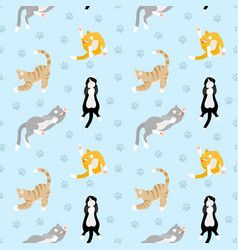 beautiful pattern with different breeds cats vector image