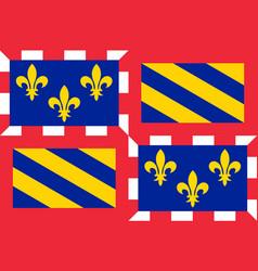 Flag of burgundy france vector