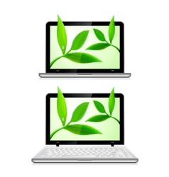 laptop with leaves vector image