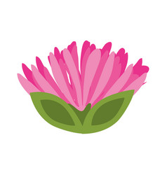 Pink flower spring image vector