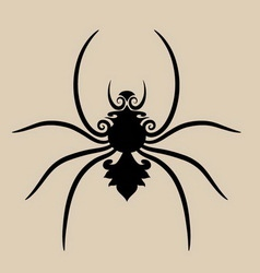 Spider ornament vector