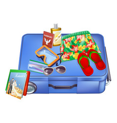 suitcase and vacation items vector image