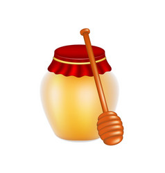 sweet honey in jar and wooden honey dipper vector image