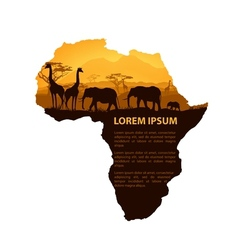 Africa travel design template vector image