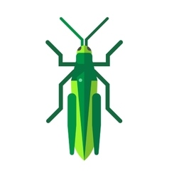 Cute grasshopper cartoon agricultural zoo large vector image