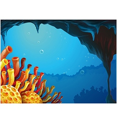 A beautiful view of the coral rees under the sea vector image vector image