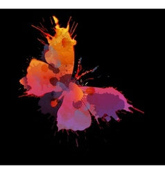 Colorful splashes butterfly vector image