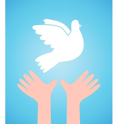 White dove and child hands vector image