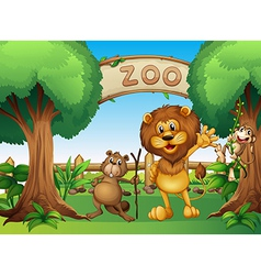 A monkey beaver and a lion in the zoo vector image