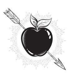 apple target pierced with arrow line art and dot vector image