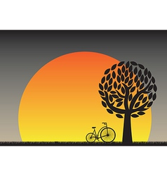 Beautiful sunset in field with a bicycle vector