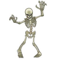 cartoon skeleton ghost vector image