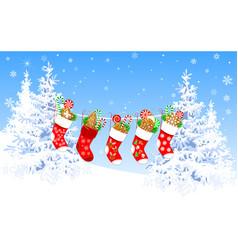 christmas socks with sweets and christmas vector image