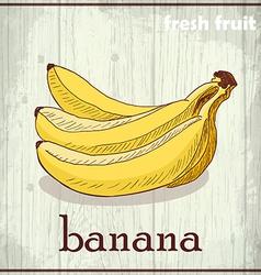 Hand drawing of banana Fresh fruit sketch vector