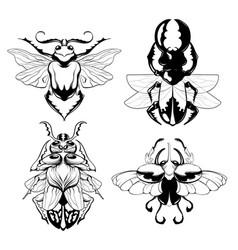set hand drawn beetles vector image