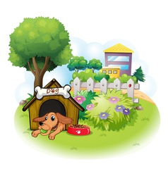 A dog inside a doghouse across the big buildings vector image vector image