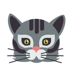 Cat animal carnival mask wild or home feline vector