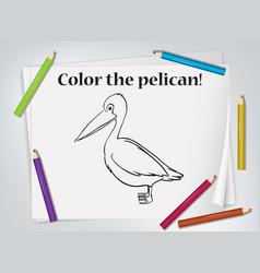 Children pelican coloring worksheet vector