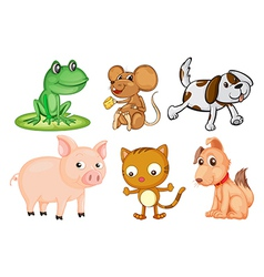 Different kinds land animals vector