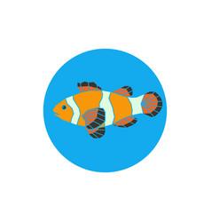 Polygonal of parrot-fish vector