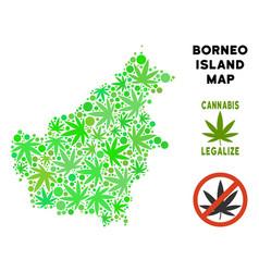 Royalty free marijuana leaves style borneo island vector