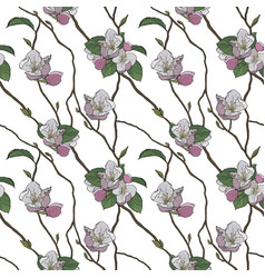 seamless pattern blooming branches spring vector image
