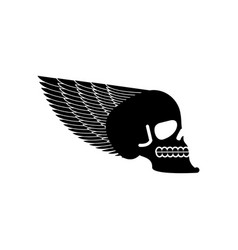 skull with wings emblem head of skeleton and wing vector image