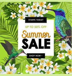 summer sale banner with tropical flowers and birds vector image