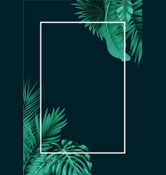 tropical forest with square frame on black backgro vector image