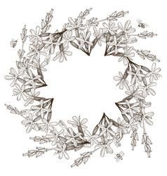wreath of wild herbal flowers hand drawn vector image