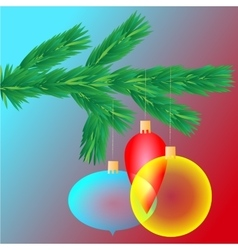 Colorful transparent Christmas balls on spruce vector image