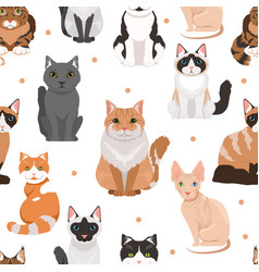 seamless pattern of cute cats colored vector image vector image