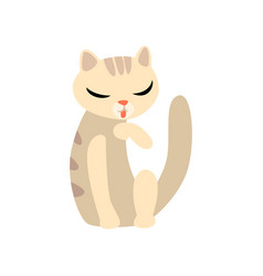 graceful cat cartoon character vector image