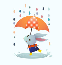 gray rabbit splashing in a puddle vector image