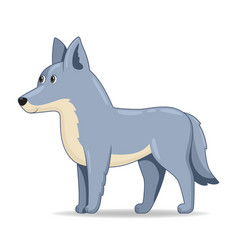 Grey wolf animal standing on a white background vector