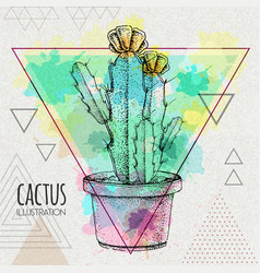 Hand drawing cactus on watercolor background vector