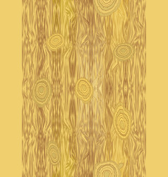 light wooden texture with knot structure vector image