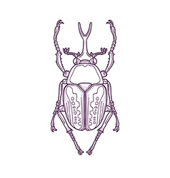 Outline Scarab Beetle Bug Insect vector