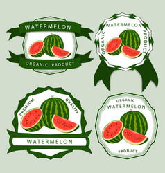 the red watermelon vector image