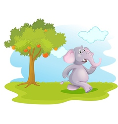 An elephant running near the orange tree vector image
