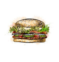 Burger from a splash watercolor hand drawn vector