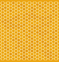 Orange seamless honey combs pattern honeycomb vector
